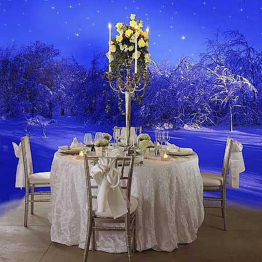 Winter Wedding Winter Wonderland The ice bar glistens as gentle snow